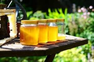 la miel es un desinfectante natural